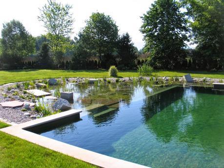 La biopiscine : pour une baignade 100% naturelle