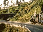J202 train jouet Darjeeling