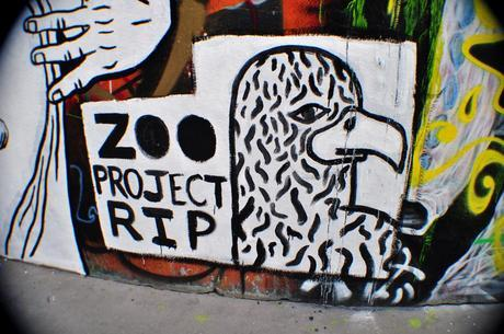 Zoo project RIP
