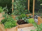 Aménager jardin avant l'été