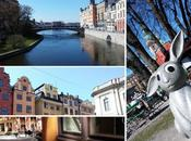 Stockholm jours