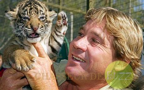 steve_irwin_mort_tournage_documentaire