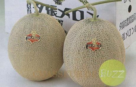 melons_buzz_japan_enchères