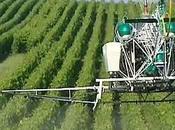 Ségolène Royal veut interdire l'épandage aérien pesticides