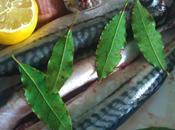 poisson week beau, frais, pour santé c'est maquereau bien entendu
