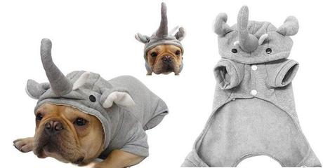 cosplay-dog-animaux-chien-déguisement-mogwaii (19)