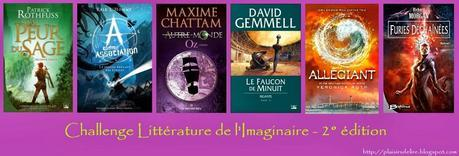 Les Mondes d'Ewilan, Tome 1 - Pierre Bottero