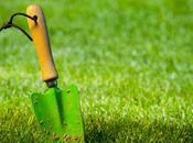 Comment réussir belle pelouse.