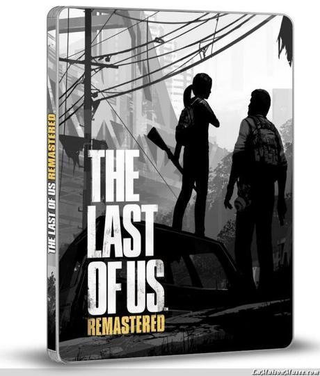Artwork Last of Us Remastered