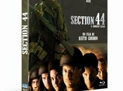 Critique Bluray: Section