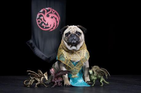 game-of-thrones-Blinkbox-dogs03