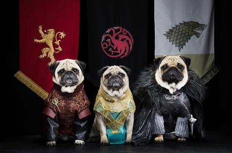 game-of-thrones-Blinkbox-dogs02