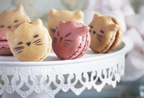Alerte mignonnerie: voici les macarons chatons!