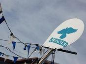 Bluebird Festival 2014