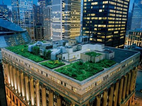 Chicago%20City%20Hall%20rooftop%20gardens