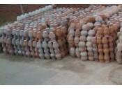 poteries Tunisie petits prix résistent