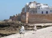 Excursion Marrakech Essaouira découvrir l'ancienne Mogador