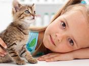 Enfant animal domestique, rapport privilégier
