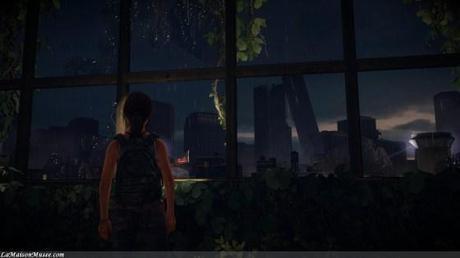 Rétrospectivement quelques mois avant The Last of Us, le virus Cordyceps a déjà ravagé les Etats-Unis.