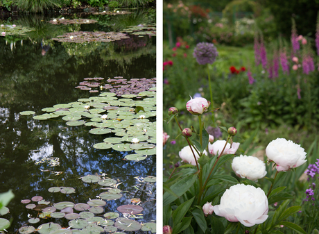 jardin_monet_giverny_11