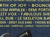 Festival univart 2014