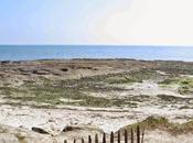 Road-Trip Bretagne Quiberon l'Ile Moines