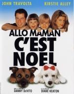 Allo-maman-c-est-Noel-affiche-8841
