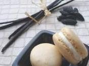 Macarons Vanille Fêve Tonka