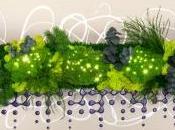 Tableau contemporain végétal Perles Lumiere