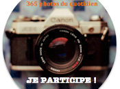 """Défi """"365 Photos quotidien"""" 34ème semaine #34/52"""