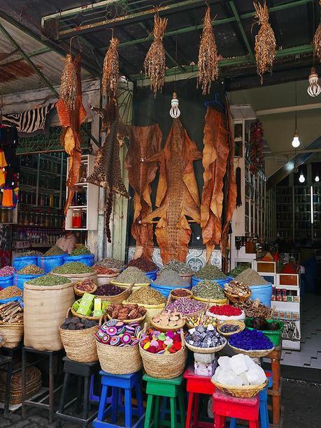 Morocco Travel Diary #8 01