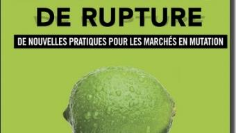 "Livre ""Le marketing de rupture"" de Christophe Chaptal de Chanteloup"