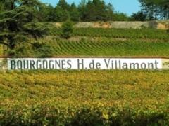 Vignoble Henri de Villamont - Clos des Guettes