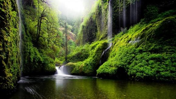 oregon_river_water_waterfalls_nature_forest_woods_green_scenic
