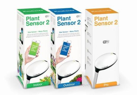 Koubachi Plant Sensor, le capteur connecté pour vos plantes