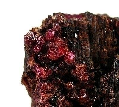 Top 10 des substances naturelles les plus chères au monde