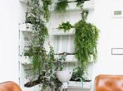 Crée végétal C'est easy