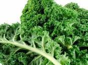 première Kale Salade.