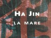 mare Jin)