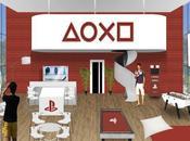 Playstation devient partenaire l'INSEP