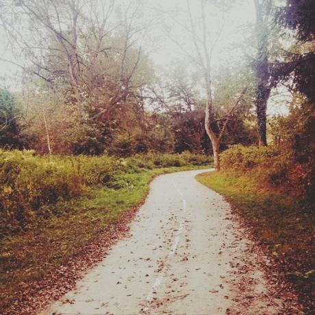 Automne - Septembre