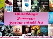Challenge Jeunesse Young adult [2013-2014] Bilan