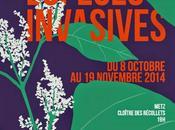 Metz, octobre Plantes invasives Lorraine