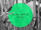 Aloa Input Anysome (PREMIERE)