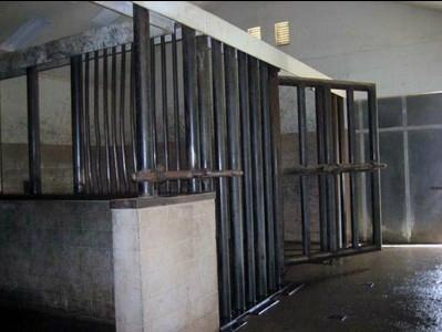 elephant cage