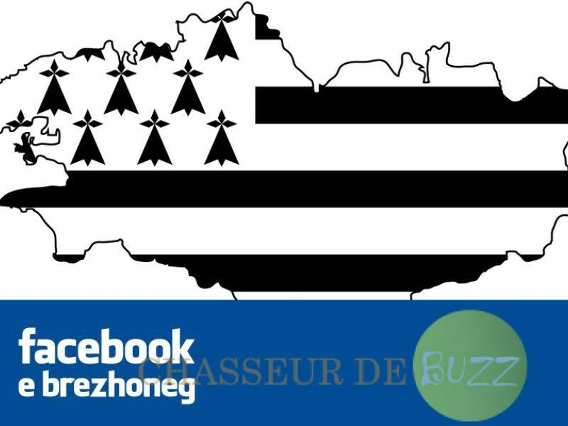 langue_bretonne_officiellement_reconnue_facebook