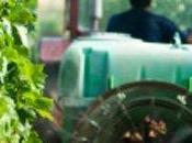 Pesticides, silence