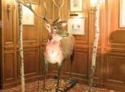 Aberlour Hunting Club, expérience unique