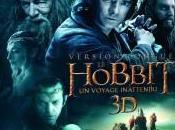steelbooks pour versions longues Hobbit