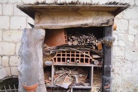 Visiter-la-cite-royale-de-Loches-chateaux-de-la-loire48_gagaone